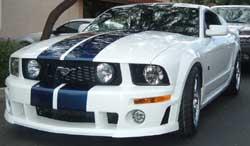 Roush Performance Chin Spoiler for Roush Front Fascia 05-09 Mustang; 401269