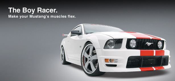 05-09 Mustang 3D Carbon Boy Racer 16PC Bodykit w/Wing + Up & Low Scoops + U-Trim + Black Out Panel + Hood Scoop