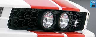 "05-09 Mustang 3D Carbon Center Fog Light GT ""E"" Style Grill"