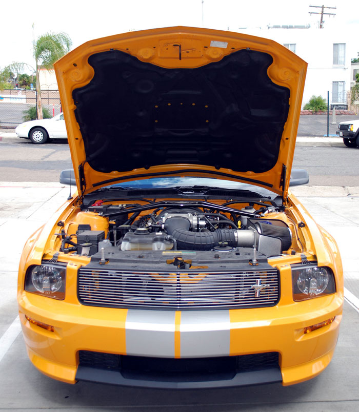 2005-2011 Mustang GT & V6 Hood Lift Kit (PAINT OPTIONS)