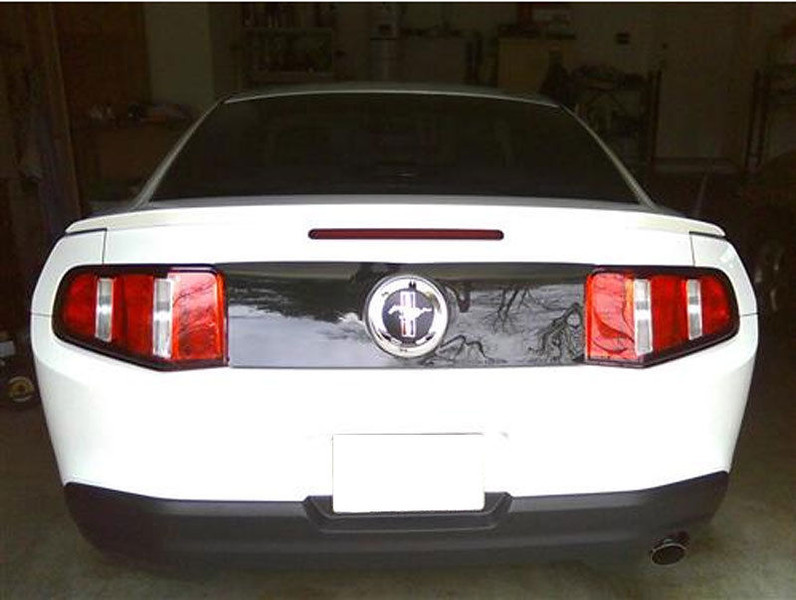 2010-2012 Mustang Center Rear Cover Panel GTS SMOKED