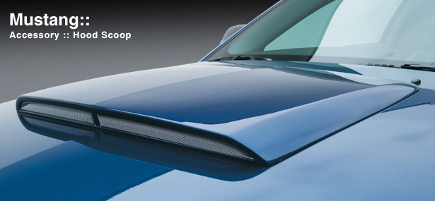 "2005-2009 Mustang 3D Carbon Hood Scoop 26"" Front-Rear 24"" Wide (Paint Options)"