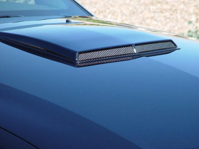 2005-2009 Mustang SALE Hood Scoop ABS PLASTIC (PAIR)