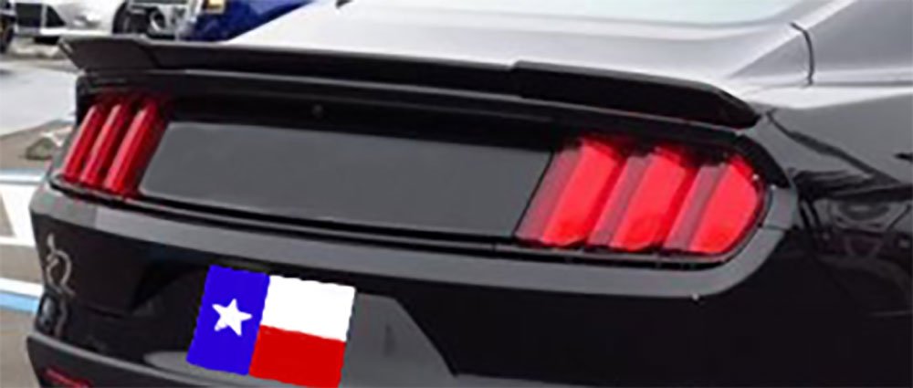 2015-18 Mustang Coupe R-WING 604 Spoiler (Paint Options)